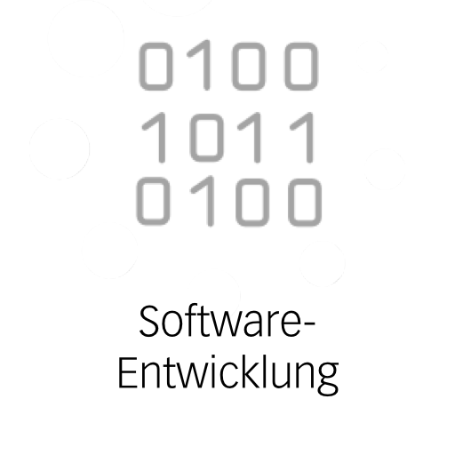 Software-Entwicklung.png