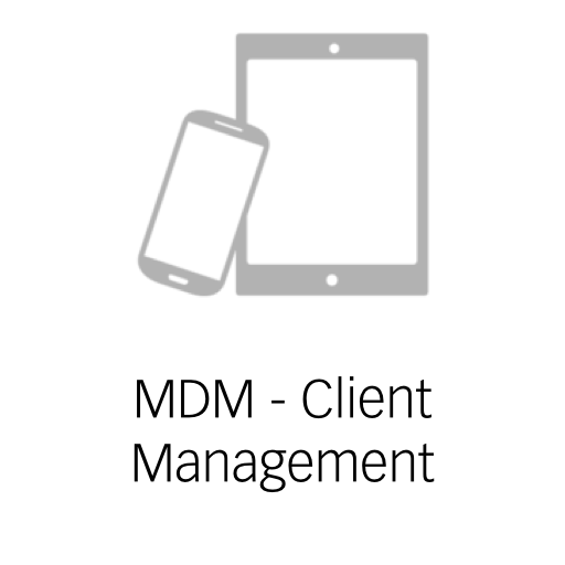 MDM - Client Management.png